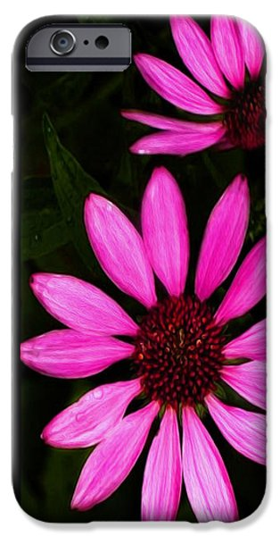 Petal Collage iPhone Case by Cheryl Young
