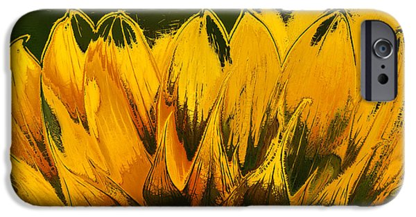 Close Up Floral iPhone Cases - Petales de Soleil - a41b iPhone Case by Variance Collections