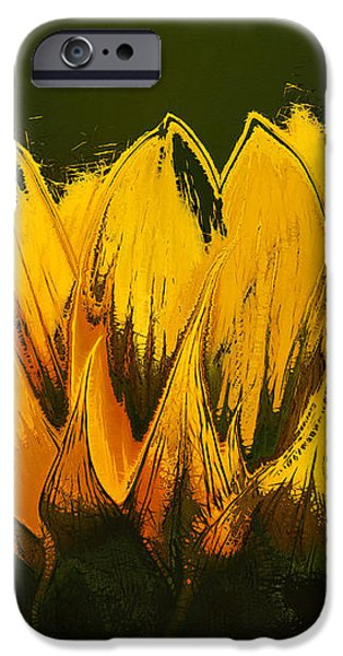 Petales de Soleil - a41b iPhone Case by Variance Collections