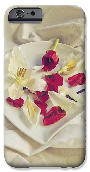 petals iPhone Case by Joana Kruse