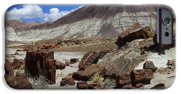 Petrified Forest Arizona iPhone Cases - Petrified Forest 2 iPhone Case by Bob Christopher