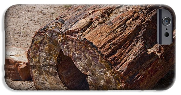 Petrified Forest Arizona iPhone Cases - Petrified Forest iPhone Case by Jon Berghoff