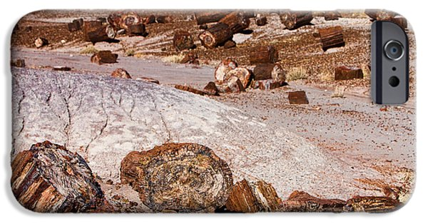 Petrified Forest Arizona iPhone Cases - Petrified Forest National Park iPhone Case by James BO  Insogna