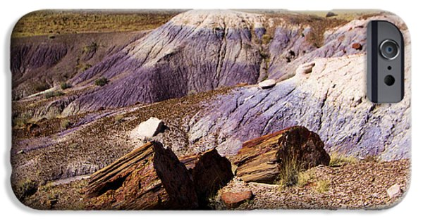 Petrified Forest Arizona iPhone Cases - Petrified Logs In The Badlands iPhone Case by Adam Jewell