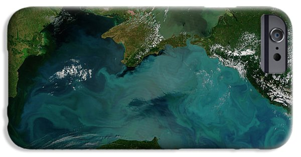 Phytoplankton iPhone Cases - Phytoplankton Bloom In The Black Sea iPhone Case by Stocktrek Images