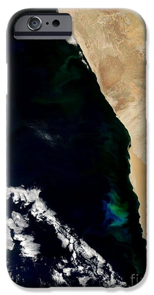 Phytoplankton iPhone Cases - Phytoplankton Bloom Off Nambia iPhone Case by Nasa