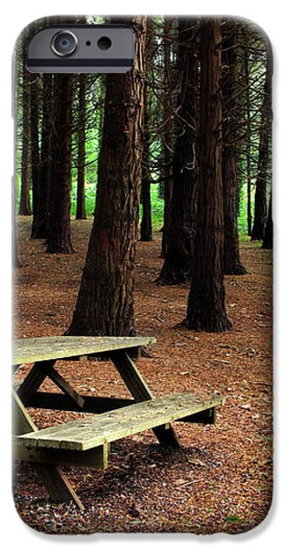 Picnic Table iPhone Case by Carlos Caetano