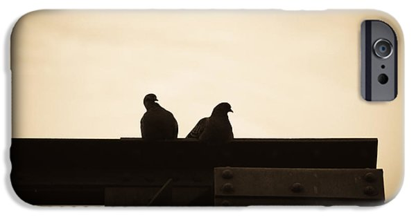 Solitude Photographs iPhone Cases - Pigeon and Steel iPhone Case by Bob Orsillo