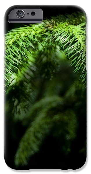 Pine Tree Brunch iPhone Case by Svetlana Sewell