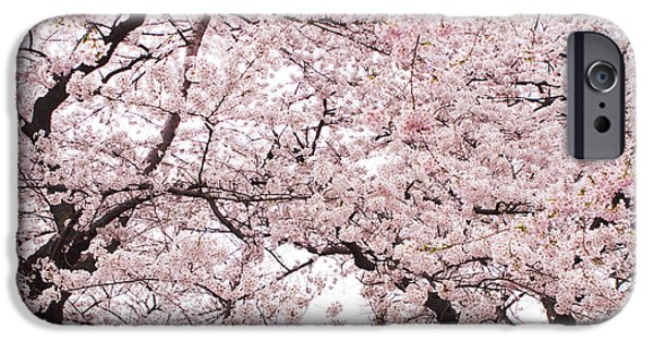 Cherry Blossoms iPhone Cases - Pink Cherry Blossom Tree iPhone Case by Ariane Moshayedi