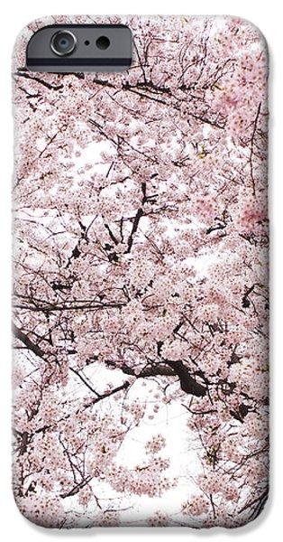 Pink Cherry Blossom Tree iPhone Case by Ariane Moshayedi