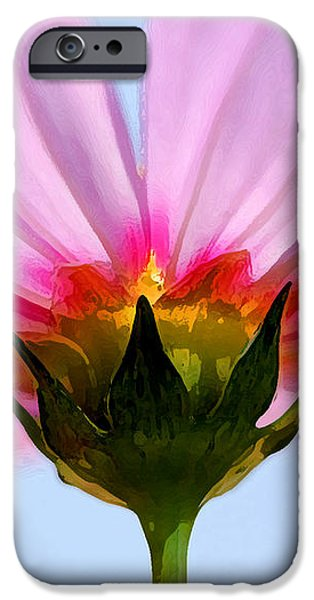 Pink Cosmos iPhone Case by Rich Franco