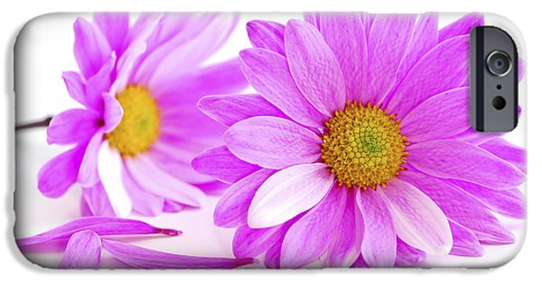 Flower Design Photographs iPhone Cases - Pink flowers iPhone Case by Elena Elisseeva