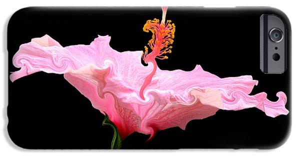 Artists4god iPhone Cases - Pink Hibiscus with Curlicue Effect iPhone Case by Rose Santuci-Sofranko