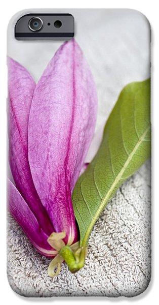 Pink magnolia flower iPhone Case by Frank Tschakert