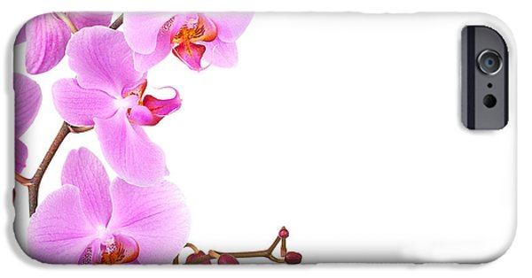 Phalaenopsis iPhone Cases - Pink orchids iPhone Case by Jane Rix