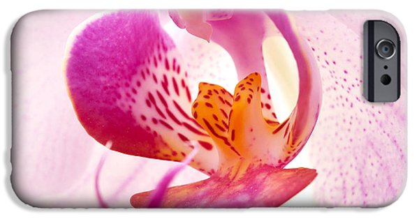 Close Up iPhone Cases - Pink phalaenopsis iPhone Case by Fabrizio Troiani
