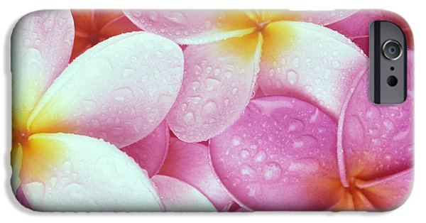 Bed Spread iPhone Cases - Pink Plumeria iPhone Case by Carl Shaneff - Printscapes