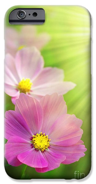 Agriculture iPhone Cases - Pink Spring iPhone Case by Carlos Caetano