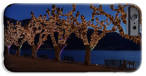 Planes Photographs iPhone Cases - Plane Trees At Christma iPhone Case by Joana Kruse