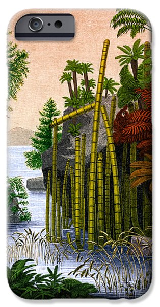 Triassic iPhone Cases - Plants Of The Triassic Period iPhone Case by Science Source
