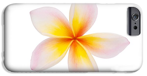 Aloha iPhone Cases - Plumeria or Leelawadee iPhone Case by Atiketta Sangasaeng