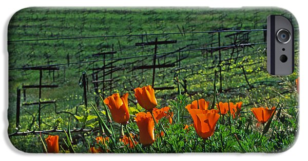 Vineyard Landscape iPhone Cases - Poppies and the Vineyard iPhone Case by Kathy Yates