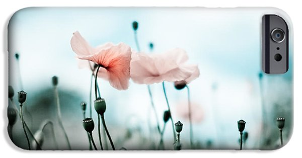 Meadow iPhone Cases - Poppy Flowers 02 iPhone Case by Nailia Schwarz