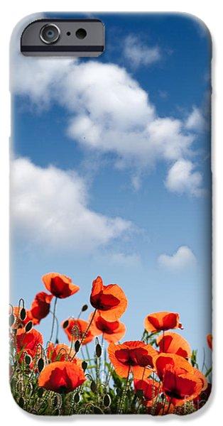 Flora iPhone Cases - Poppy Flowers 04 iPhone Case by Nailia Schwarz