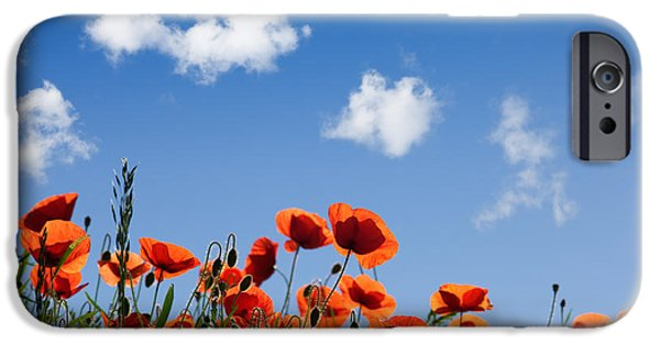 Meadow iPhone Cases - Poppy Flowers 05 iPhone Case by Nailia Schwarz