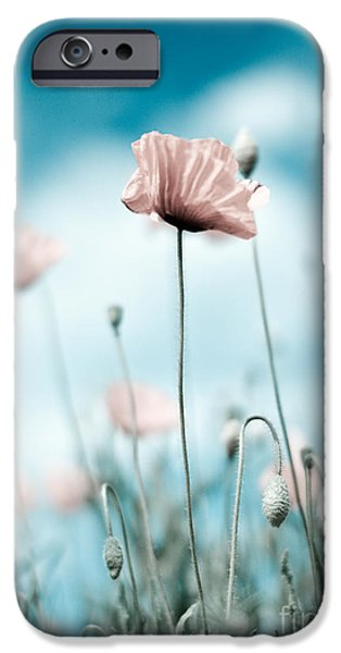 Meadow iPhone Cases - Poppy Flowers 10 iPhone Case by Nailia Schwarz