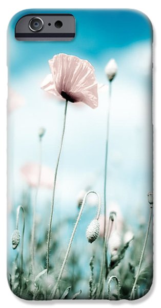 Meadow iPhone Cases - Poppy Flowers 13 iPhone Case by Nailia Schwarz