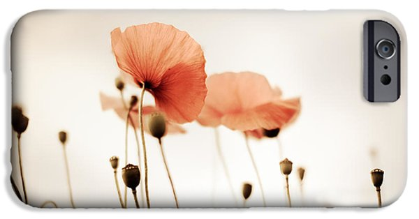 Petals iPhone Cases - Poppy Flowers 14 iPhone Case by Nailia Schwarz