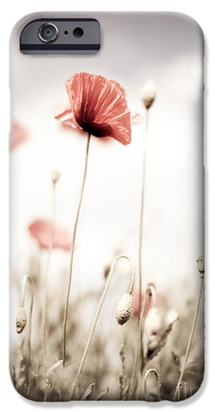 Flora iPhone Cases - Poppy Flowers 15 iPhone Case by Nailia Schwarz