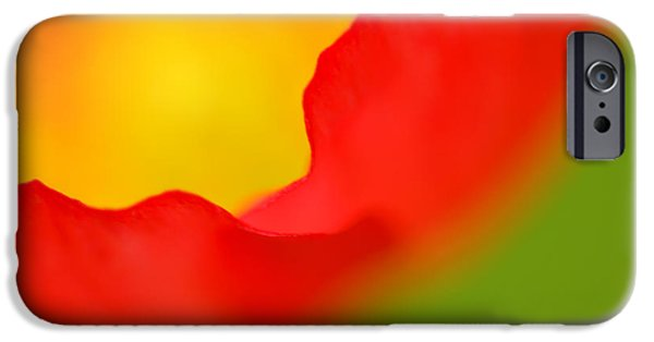 Close-up Photographs iPhone Cases - Poppy iPhone Case by Silke Magino