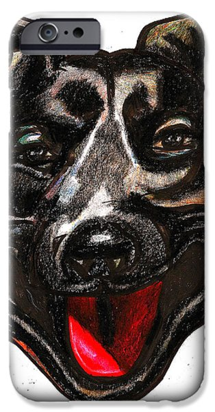 Feed Drawings iPhone Cases - Portrait Of A Pooch iPhone Case by Al Goldfarb