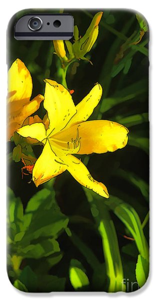 Artistic Photography iPhone Cases - Pot Luck iPhone Case by Tom Prendergast