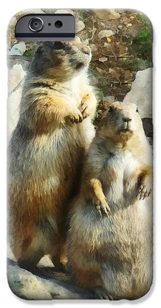 Prairie Dog Formal Portrait iPhone Case by Susan Savad