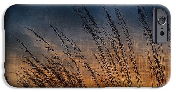 Prairie iPhone Cases - Prairie Grass Sunset Patterns iPhone Case by Steve Gadomski