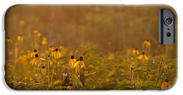 Prairie iPhone Cases - Prairie Wildflowers iPhone Case by Steve Gadomski