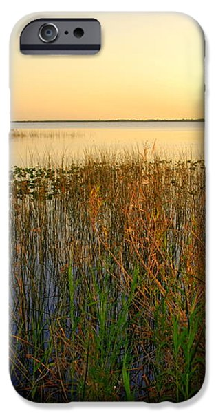 Pretty evening at the lake iPhone Case by Susanne Van Hulst