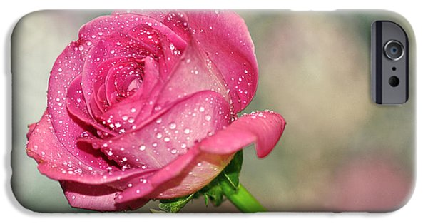 Wet Petals iPhone Cases - Pretty Rose iPhone Case by Kaye Menner