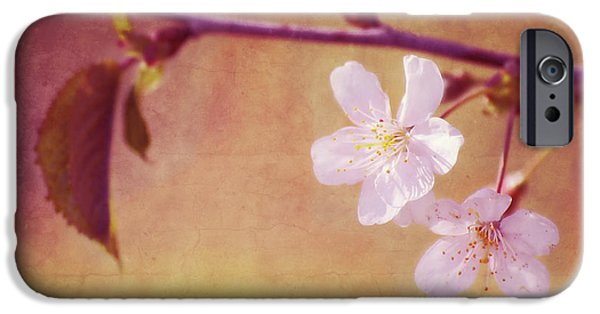 Cherry Blossoms Mixed Media iPhone Cases - Primavera iPhone Case by Angela Doelling AD DESIGN Photo and PhotoArt