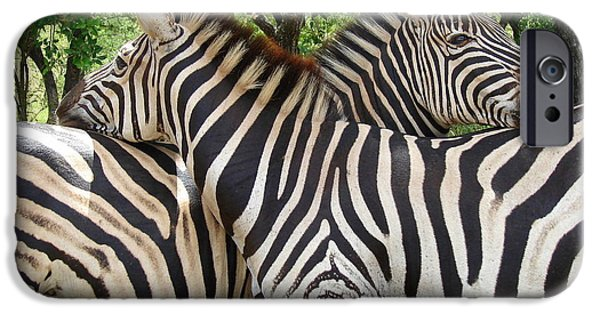 Wildlife Imagery iPhone Cases - Protectors iPhone Case by Ramona Johnston