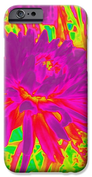 Out Of This World iPhone Cases - Psyche Dahlia Explosion iPhone Case by Lingfai Leung