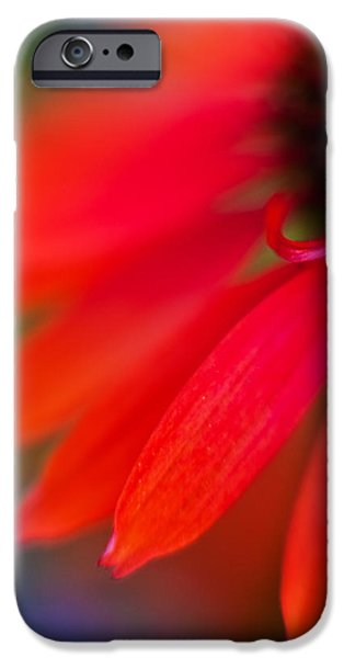 Nature Abstracts iPhone Cases - Psychedlia iPhone Case by Mike Reid