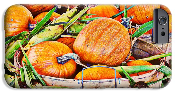 Farm Stand Mixed Media iPhone Cases - Pumpkin and Corn Combo iPhone Case by Ms Judi