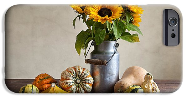Shiny iPhone Cases - Pumpkins and Sunflowers iPhone Case by Nailia Schwarz