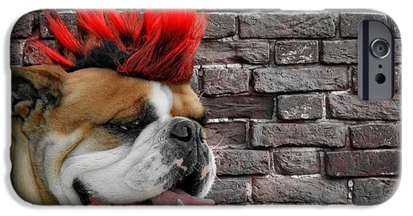 Dog iPhone Cases - Punk Bully iPhone Case by Christine Till