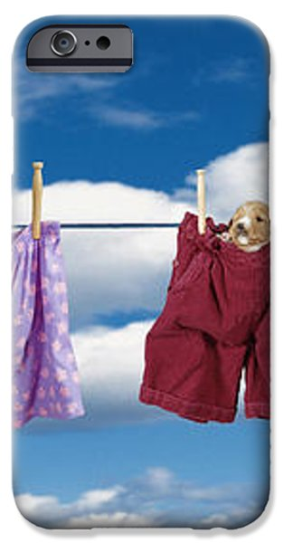 Puppies Hanging Out iPhone Case by Darwin Wiggett